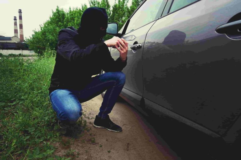 Auto theft is a big problem in the Grand Rapids area and larger areas of Michigan like Detroit & Flint.